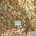 20mm natural charm river pebbles, near me at a garden supplies business in melbourne