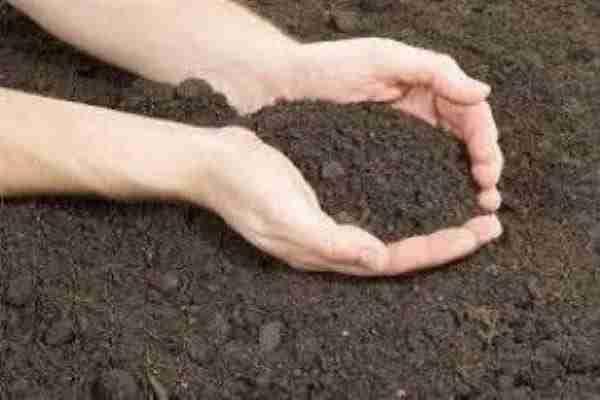 Garden Soil Compost Delivery Bayside Bayside Garden Supplies Melbourne